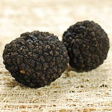 Fresh Black Burgundy Truffles from Italy - Tuber Uncinatum