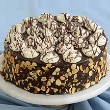 Chocolate Coconut Sensation Cake
