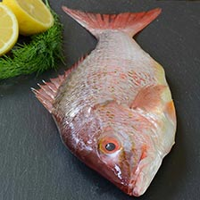 Whole Red Snapper, Scaled and Gutted