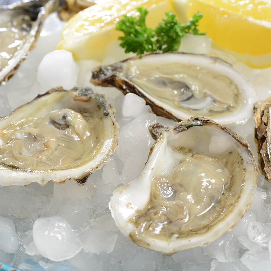 Blue Point Oysters For Sale | Buy Raw Oysters - photo#1