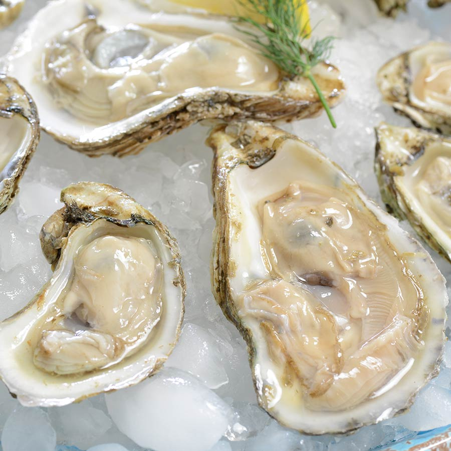 James River Oysters | Buy Oysters Online | Best Raw Oysters - photo#26