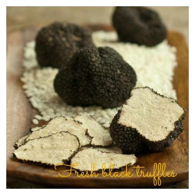 Waiting for the real deal? Fresh truffle season will start soon! Sign up for the Fresh Truffle Notice while you wait